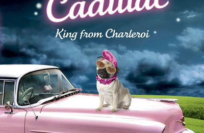 ELVIS CADILLAC, KING FROM CHARLEROI - Nadine Monfils