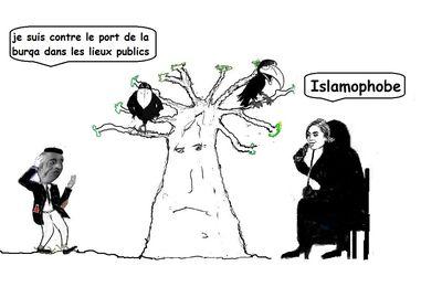 Après le jugement du tribunal de Paris en faveur de Pascal Bruckner, il semble que la liberté de critiquer l' islamisme, qualifiée d' islamophobie, reste pour le moment en vigueur en France