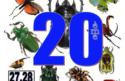 20ème Bourse internationale d'insectes de Juvisy