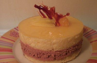 Gâteau mousse au chocolat et mangue
