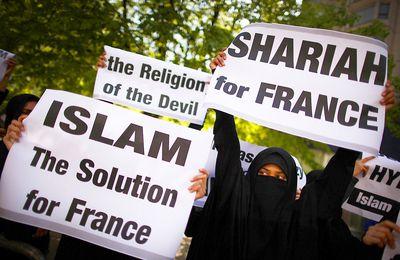 Ce que pensent les musulmans de France.