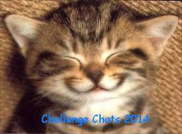 Challenge Chat 2014
