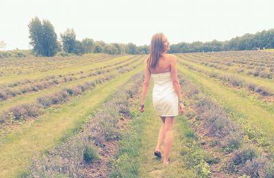Une fille, un champs de lavande et une merveilleuse journée