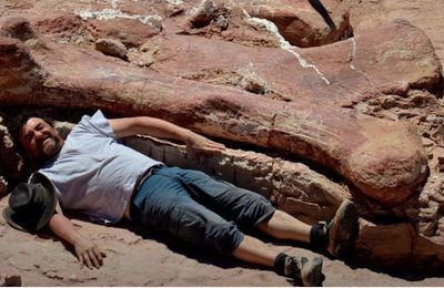 Patagotitan mayorum, le (nouveau) plus grand dinosaure au monde