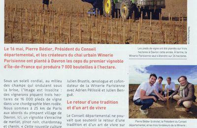 Viticulture dans les Yvelines