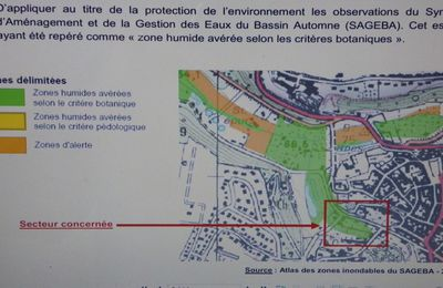 Crépy en Valois : Modification n°4 du plan local d'urbanisme (suite)