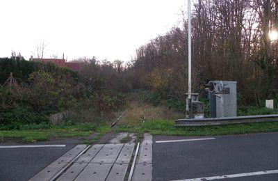 Communauté de communes du pays de Valois : La voie verte et le bois du roi