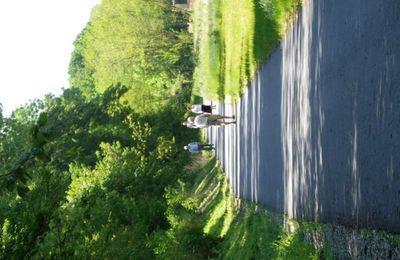 Communauté de communes du pays de Valois-Crépy en Valois : Inauguration de la voie verte