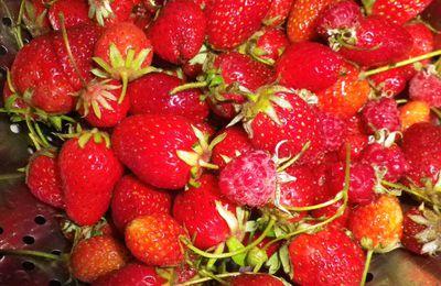 Glace aux fraises du jardin... Second essai !