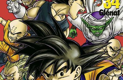 Dragon Ball Perfect Edition 34
