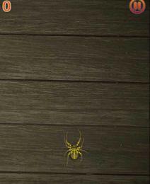Spider Squish