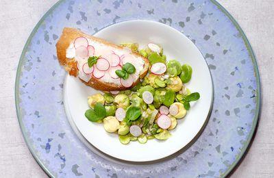 Salade de fèves, avocat et pecorino, tartine de fromage frais au pecorino et aux radis