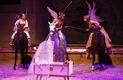 "Spectacle de Noël au Musée du Cheval de Chantilly ""La Reine des Songes"""
