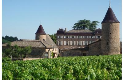 Le Château de Chasselas, un domaine à visiter sans modération... off course !