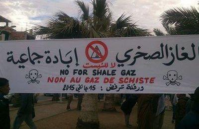 Alger : tous les manifestants contre les gaz de schiste embarqués par la Police