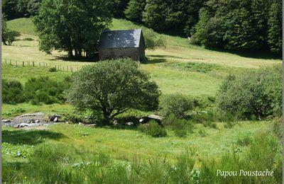 Naissance de la Dordogne et son parcours en Auvergne