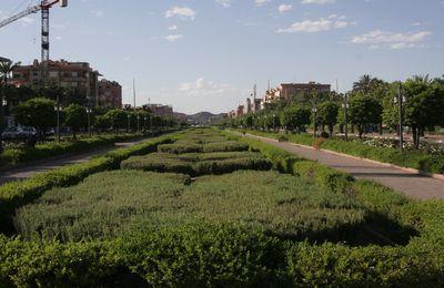 Coups de Coeur 2013 : Meilleur Site Internet des Mairies du Maroc