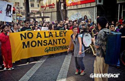 """Guatemala : la """"Loi Monsanto"""" en partie suspendue sous la pression des mouvements sociaux (Adital)"""