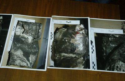 Vol 4U9525 : la 2e boîte noire montre que le pilote a accéléré la descente (La Presse.ca)