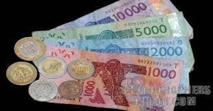 « Le franc CFA freine le développement de l'Afrique » (Afriques en Lutte)