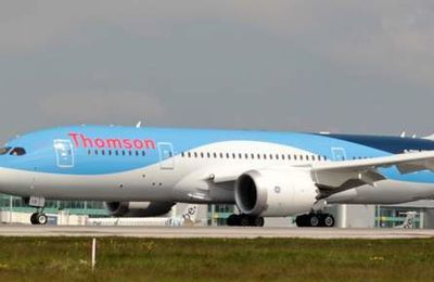 Le pilote d'un avion britannique à destination de l'Egypte avait repéré un missile en août (7/7)