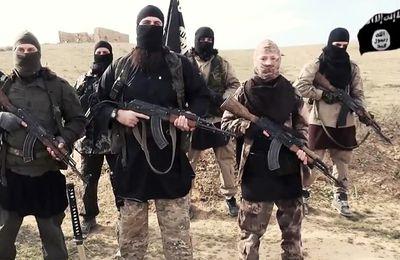 Le pétrole, le coton ou le phosphate de l'État islamique sont-ils vendus en Europe ? (Observatoire des multinationales)