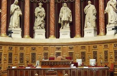 La condamnation pénale de la visite de sites Web adoptée au Sénat (Numerama)