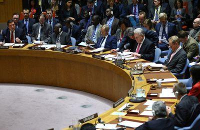 Syrie. Un diplomate bolivien à l'ONU dénonce la violation extrêmement grave du droit international par les Etats-Unis (Vidéo)