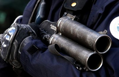 La France «En Marche» vers un État policier... (Blog Mediapart)