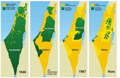 """""""This is Palestine"""". Interview avec ceux qui ont perdu leur maison, leur terre, leur famille (Vidéo)"""
