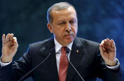 Un an après le coup d'État raté en Turquie, encore des zones d'ombre (AFP/ MEE)
