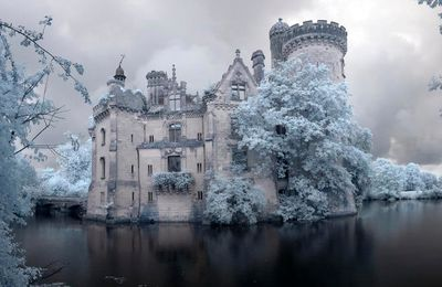 Il Faut Sauver Le Château De La Mothe-Chandeniers (Vienne 86)