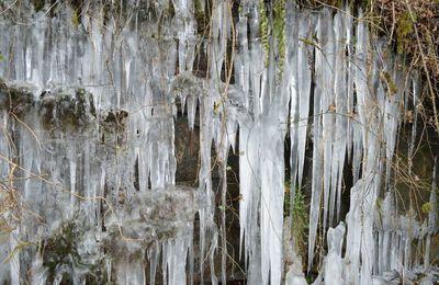 Land art hivernal en pays bocager.