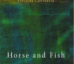 Horse and Fish (2004) - Vinicius Cantuária