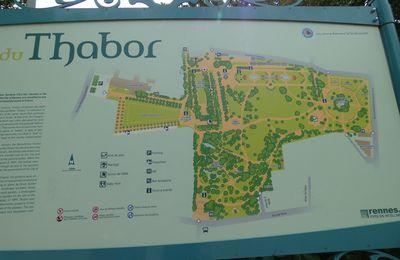 Et si on allait au Thabor ?