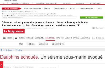 Cinq dauphins échoués ce Samedi en Bretagne. Un séisme sous-marin évoqué