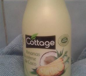 on dirait le sud!douche cottage noix de coco ananas