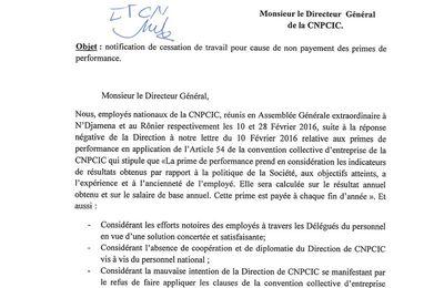 Tchad: les employés du CNPCIC menacent de cesser leurs activités