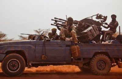 Enlèvement du ressortissant français au Tchad : un lourd soupçon pèse sur le MJE