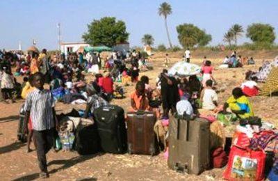 Centrafrique : Un village proche de Ndélé occupé par les réfugiés tchadiens