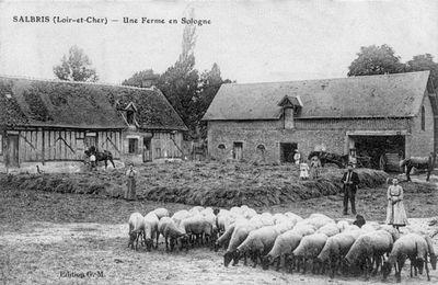 L'artisanat rural en Beaujolais au XIXème siècle