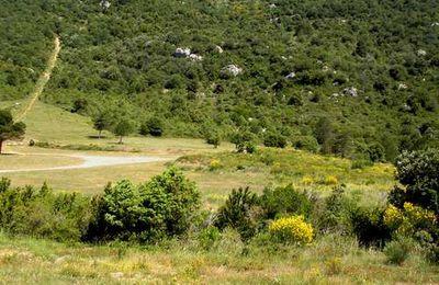 Pays cathare : à l'assaut des nids d'aigles des Corbières