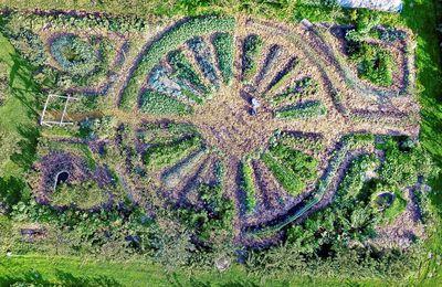 Initiative agroécologique : LE JARDIN DES CINQ SENS