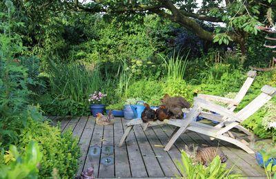 Le blog du jardin a 7 ans et le site internet est tout neuf!