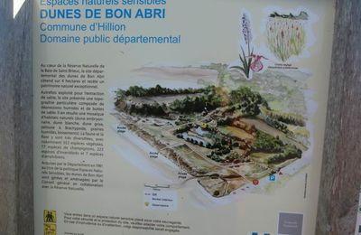 """Sortie 73 du groupe """"Patrimoine Géologique 22"""" autour de la presqu'île d'Hillion"""