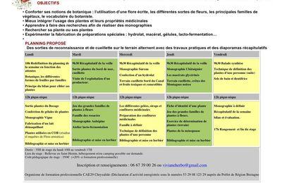 FORMATION PLANTES MEDICINALES approfondissement du 4 au 8 septembre 2017