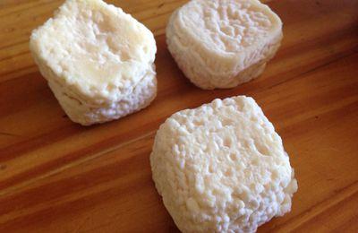 Fromage de chèvre frais ( suite)