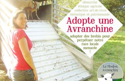"""Adopte une avranchine"" : notre mission associative"