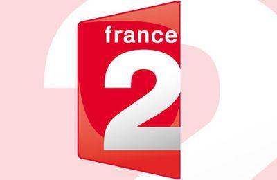 3,1 millions de téléspectateurs pour le troisième débat de la primaire de gauche sur France 2