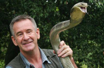 France 4 dévoile ce soir les 10 serpents les plus dangereux de plusieurs pays